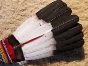 native-american-eagle-feather-tail-dance-prayer-fan-regalia-beaded-handle-case2